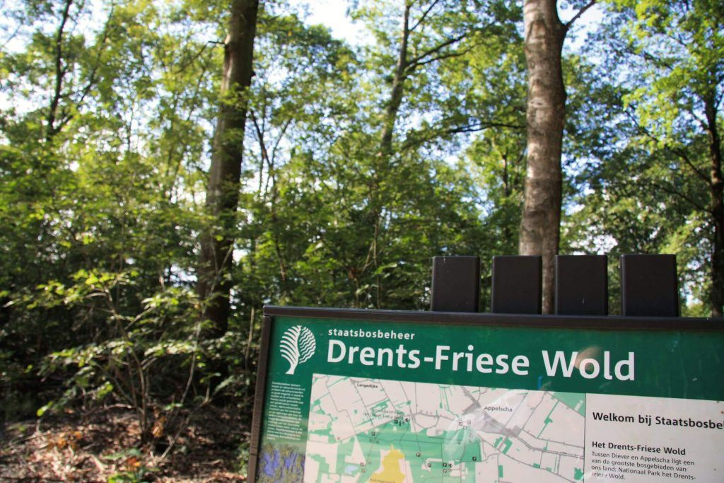 Animatievideo Nationaal Park Drents-Friese Wold
